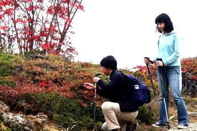 09yoshi-08.JPG
