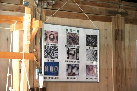 10akaiwa7-you-4.JPG