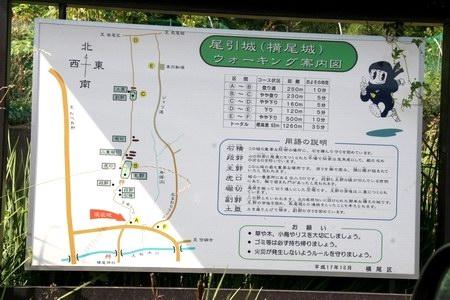 10911-6-13.JPG