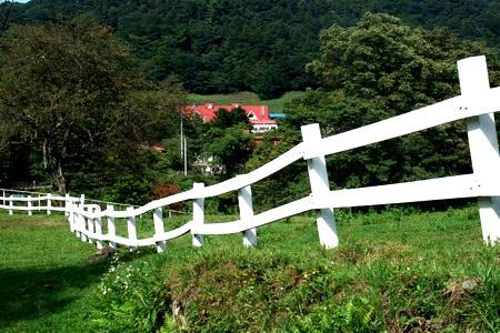 kouzu-03.JPG