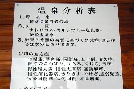 y45-203.JPG