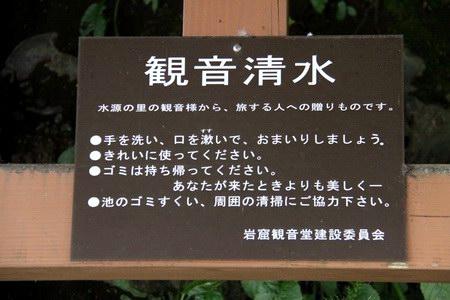 11-11-4-07.JPG