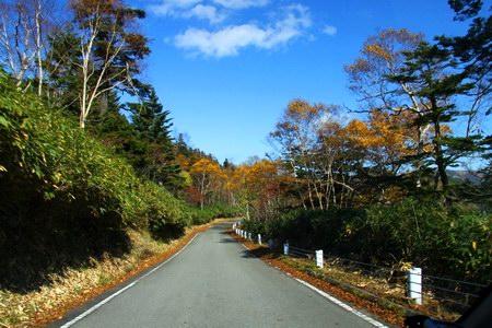 11-10-16-ushi-18.JPG