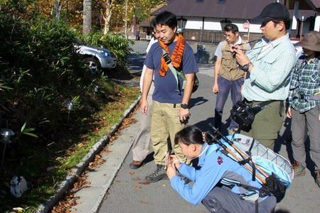11-10-16-ushi-22.JPG