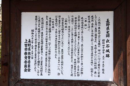 2013-5-1a-10.JPG