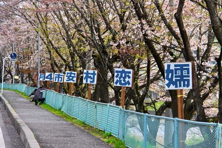 2013-4-28E-03.JPG