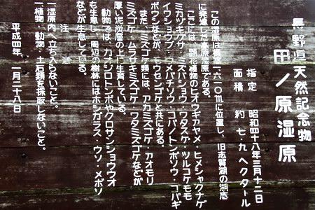 14-7-5-01.JPG