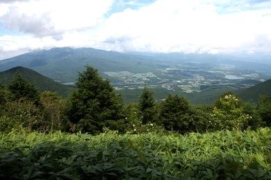 sagikiyama-05.JPG